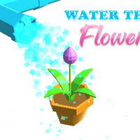 Water the Flower